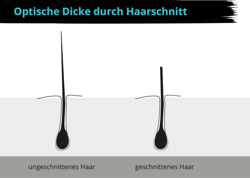 Optische Haardichte durch Haarschnitt